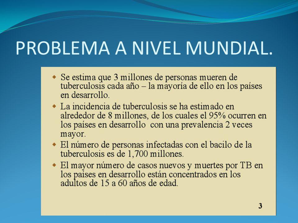 PROBLEMA A NIVEL MUNDIAL.