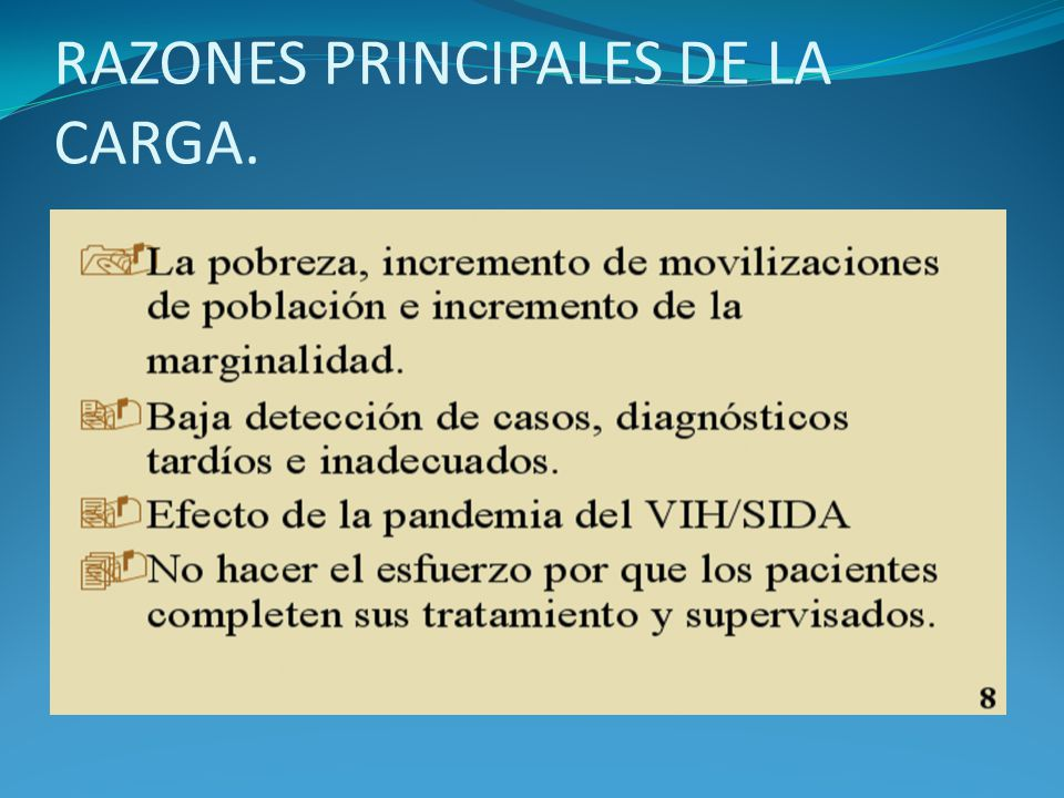 RAZONES PRINCIPALES DE LA CARGA.