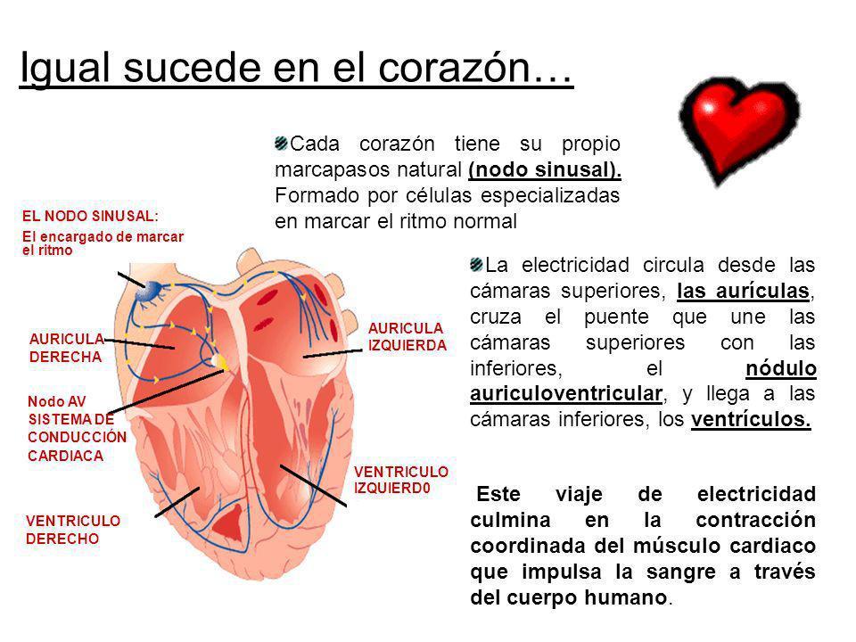 Igual sucede en el corazón…
