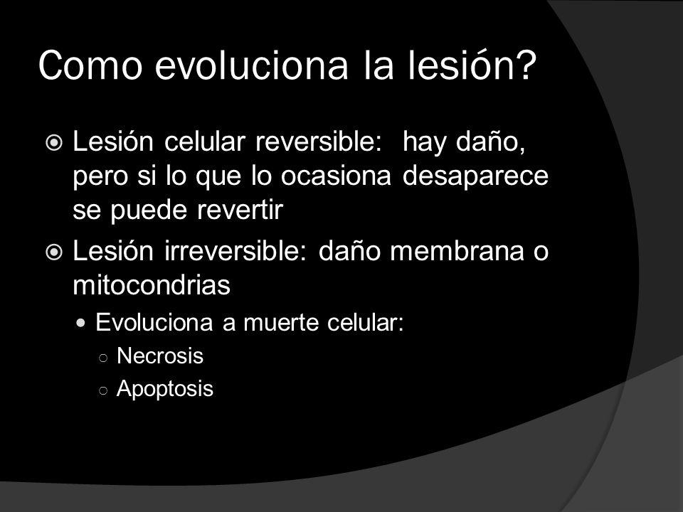 Como evoluciona la lesión