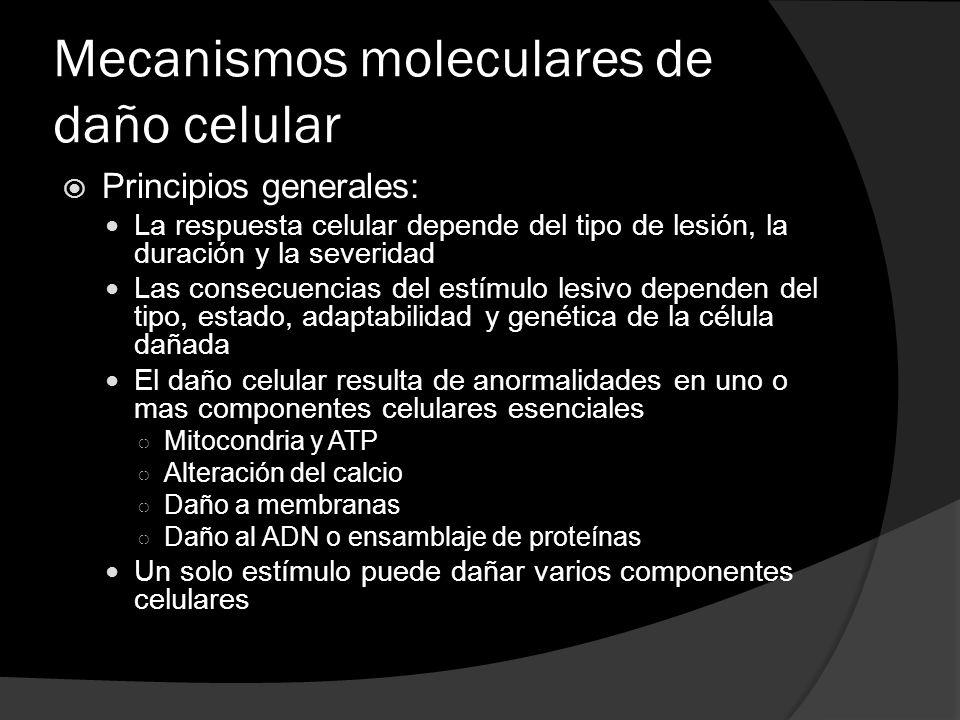 Mecanismos moleculares de daño celular