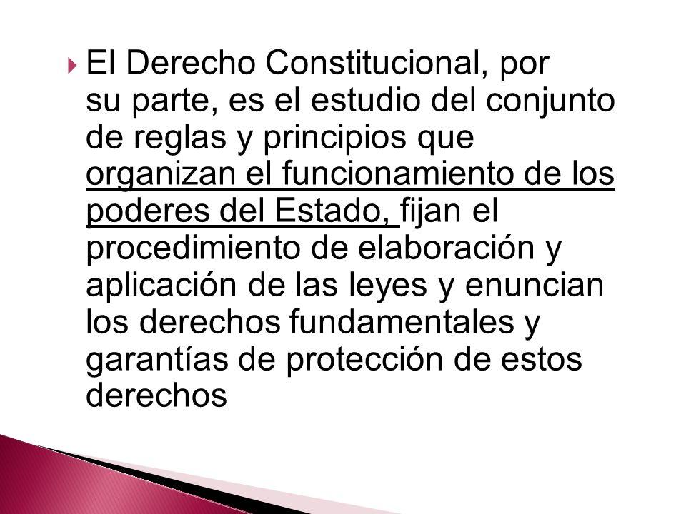 El Derecho Constitucional, por su parte, es el estudio del conjunto de reglas y principios que organizan el funcionamiento de los poderes del Estado, fijan el procedimiento de elaboración y aplicación de las leyes y enuncian los derechos fundamentales y garantías de protección de estos derechos
