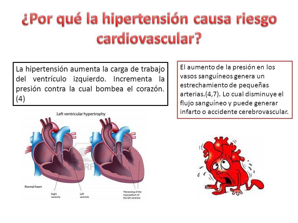 ¿Por qué la hipertensión causa riesgo cardiovascular