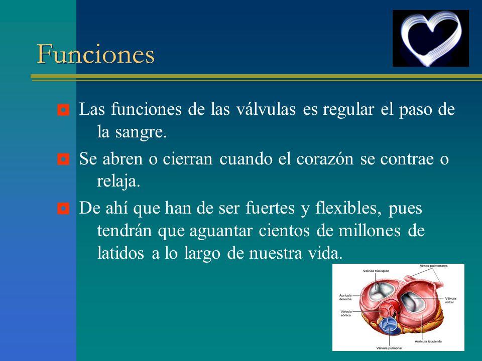 Funciones ◘ Las funciones de las válvulas es regular el paso de la sangre. Se abren o cierran cuando el corazón se contrae o relaja.