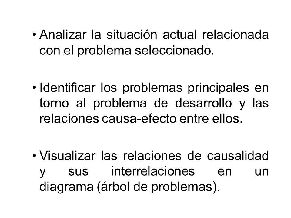 Analizar la situación actual relacionada con el problema seleccionado.