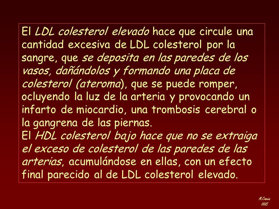 El LDL colesterol elevado hace que circule una cantidad excesiva de LDL colesterol por la sangre, que se deposita en las paredes de los vasos, dañándolos y formando una placa de colesterol (ateroma), que se puede romper, ocluyendo la luz de la arteria y provocando un infarto de miocardio, una trombosis cerebral o la gangrena de las piernas.