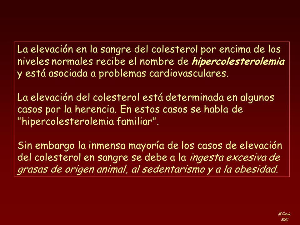 La elevación en la sangre del colesterol por encima de los niveles normales recibe el nombre de hipercolesterolemia y está asociada a problemas cardiovasculares.