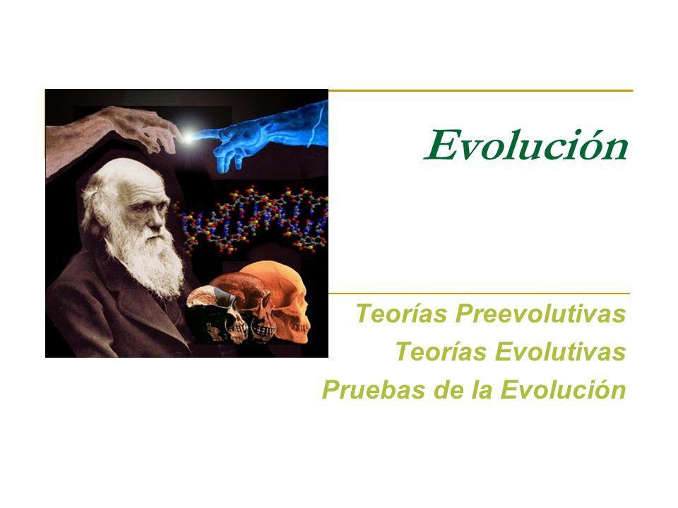Teorías Preevolutivas Teorías Evolutivas Pruebas de la Evolución