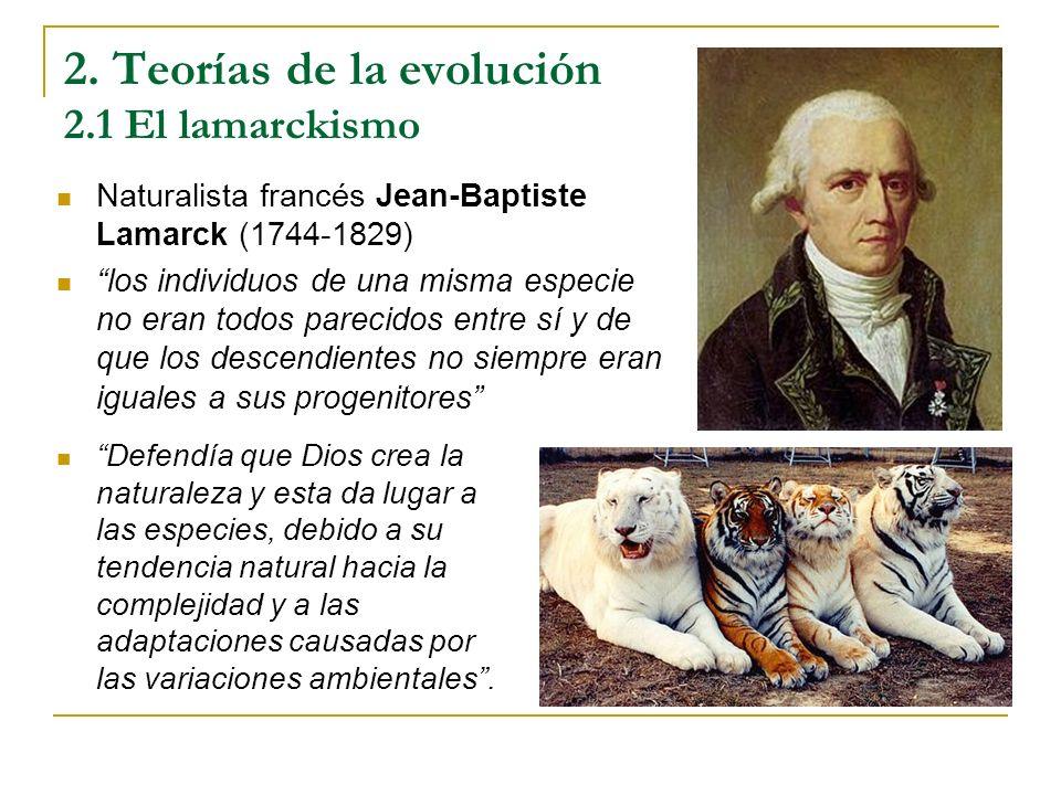 2. Teorías de la evolución 2.1 El lamarckismo