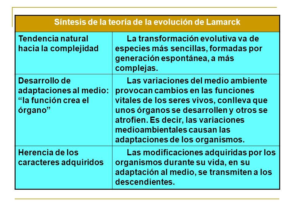 Síntesis de la teoría de la evolución de Lamarck