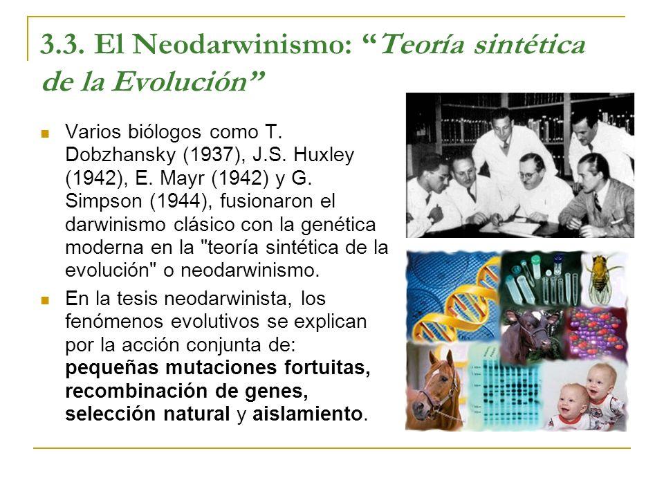 3.3. El Neodarwinismo: Teoría sintética de la Evolución