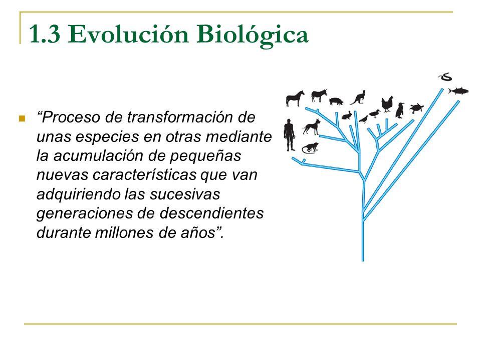 1.3 Evolución Biológica