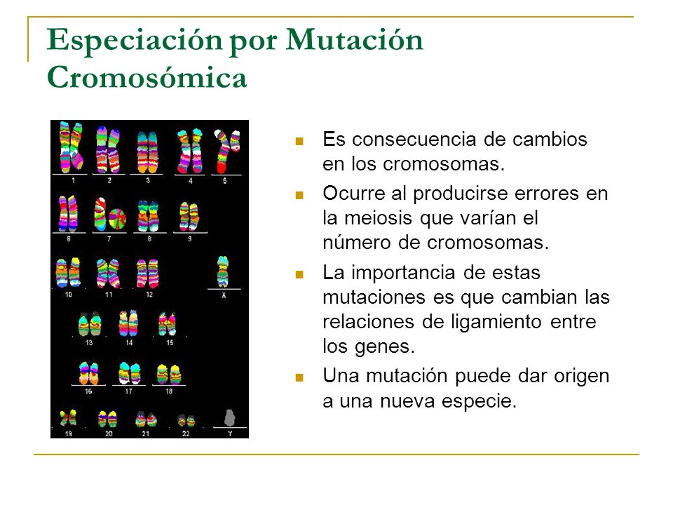 Especiación por Mutación Cromosómica