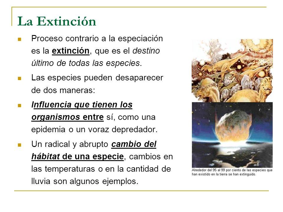 La Extinción Proceso contrario a la especiación es la extinción, que es el destino último de todas las especies.