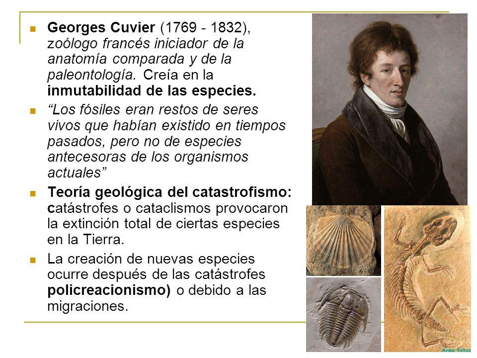 Georges Cuvier (1769 - 1832), zoólogo francés iniciador de la anatomía comparada y de la paleontología. Creía en la inmutabilidad de las especies.
