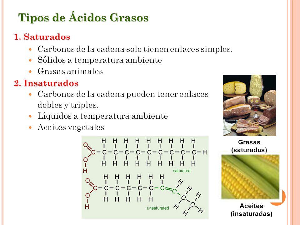 Aceites (insaturadas)