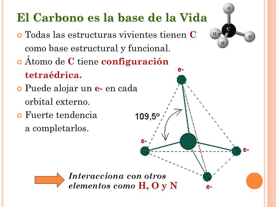 El Carbono es la base de la Vida