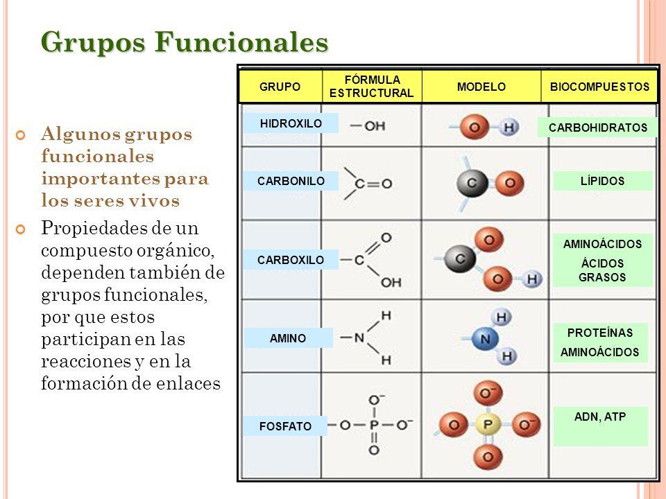 Grupos FuncionalesGRUPO. FÓRMULA ESTRUCTURAL. MODELO. BIOCOMPUESTOS. FOSFATO. AMINO. CARBOXILO. CARBONILO.