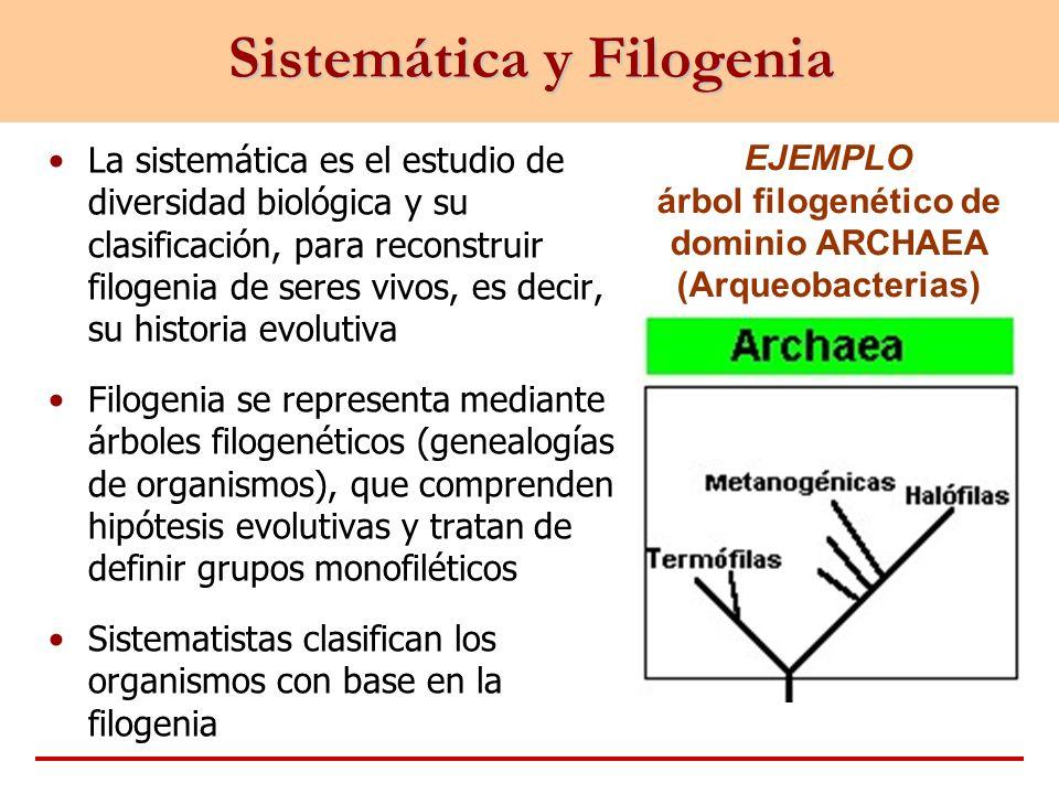 Sistemática y Filogenia