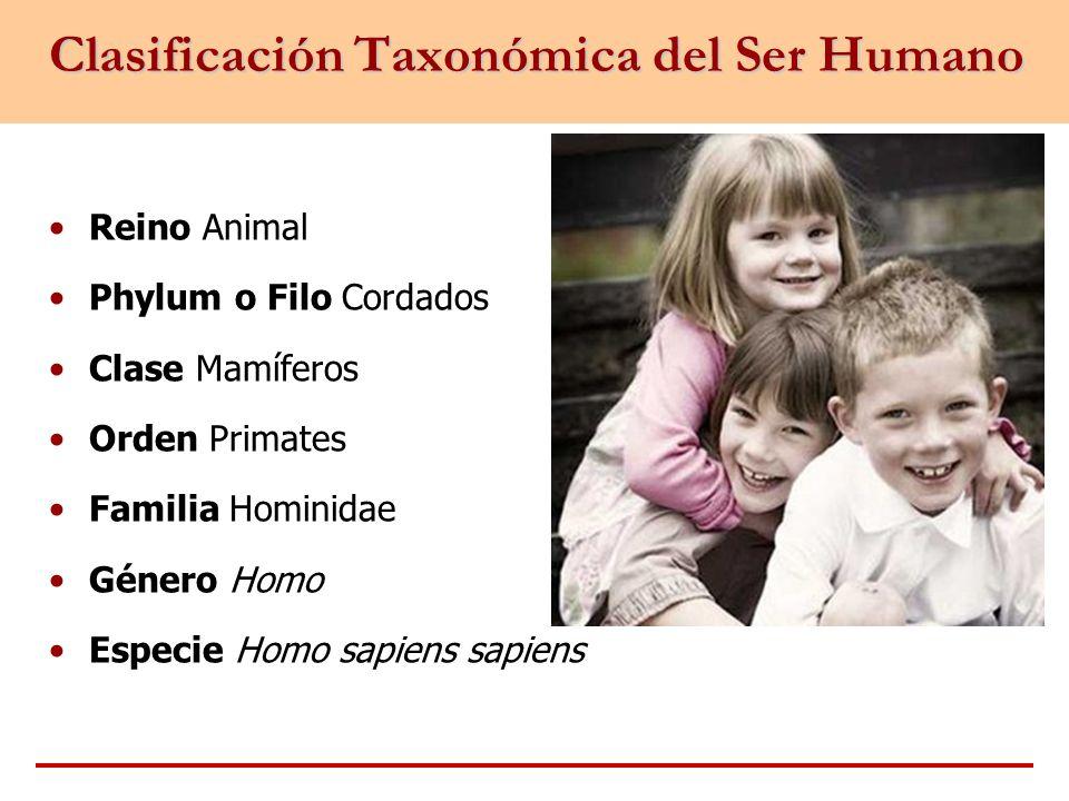 Clasificación Taxonómica del Ser Humano