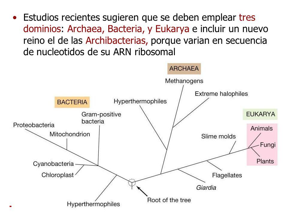 Estudios recientes sugieren que se deben emplear tres dominios: Archaea, Bacteria, y Eukarya e incluir un nuevo reino el de las Archibacterias, porque varian en secuencia de nucleotidos de su ARN ribosomal