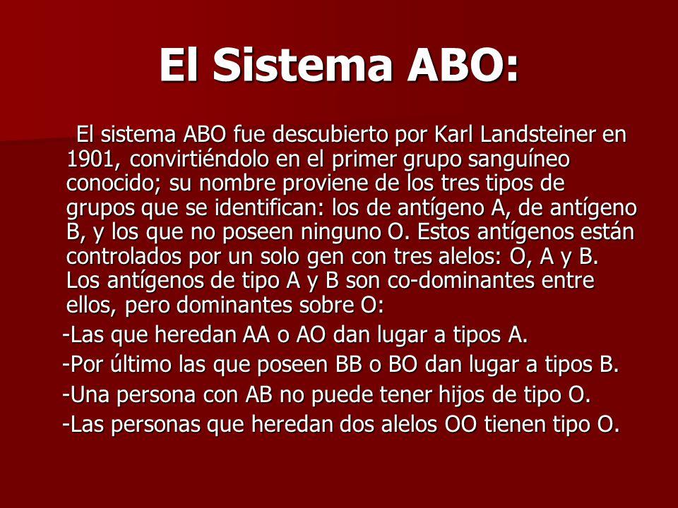 El Sistema ABO: