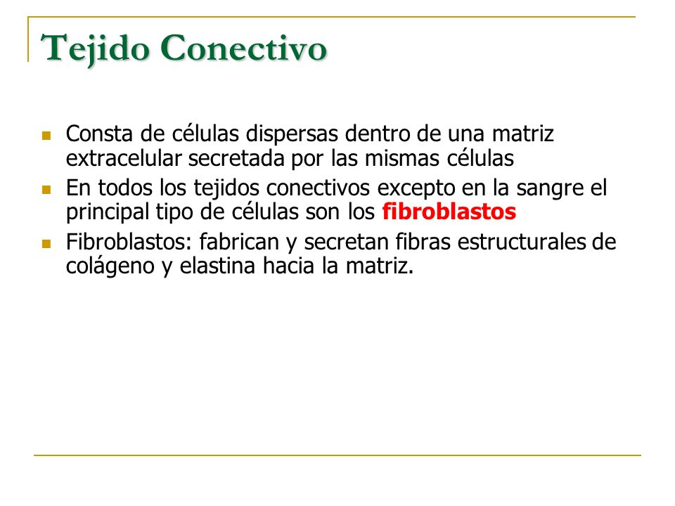 Tejido Conectivo Consta de células dispersas dentro de una matriz extracelular secretada por las mismas células.