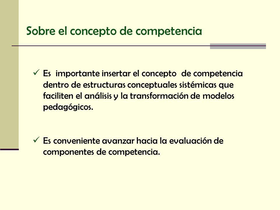 Sobre el concepto de competencia