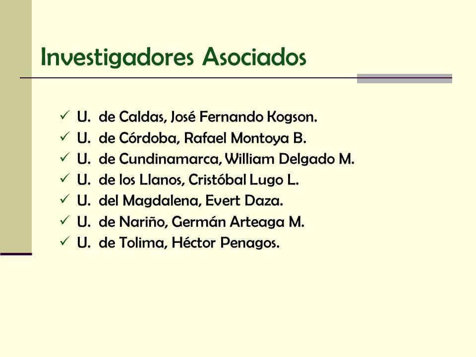 Investigadores Asociados