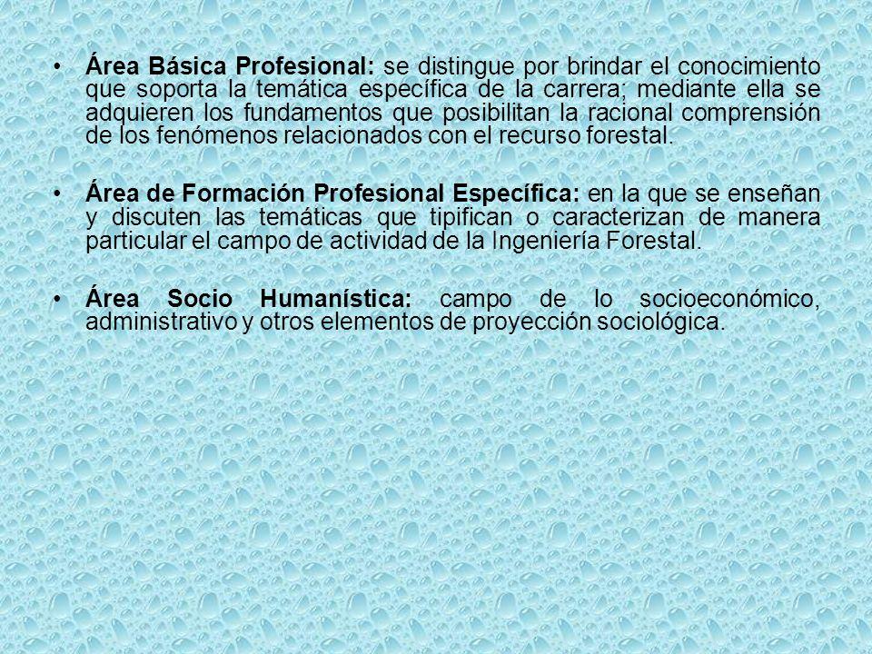 Área Básica Profesional: se distingue por brindar el conocimiento que soporta la temática específica de la carrera; mediante ella se adquieren los fundamentos que posibilitan la racional comprensión de los fenómenos relacionados con el recurso forestal.
