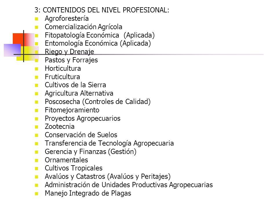 3: CONTENIDOS DEL NIVEL PROFESIONAL:
