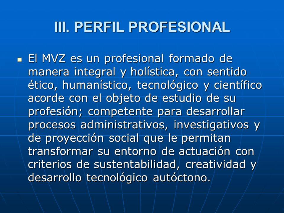 III. PERFIL PROFESIONAL