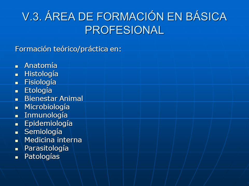 V.3. ÁREA DE FORMACIÓN EN BÁSICA PROFESIONAL