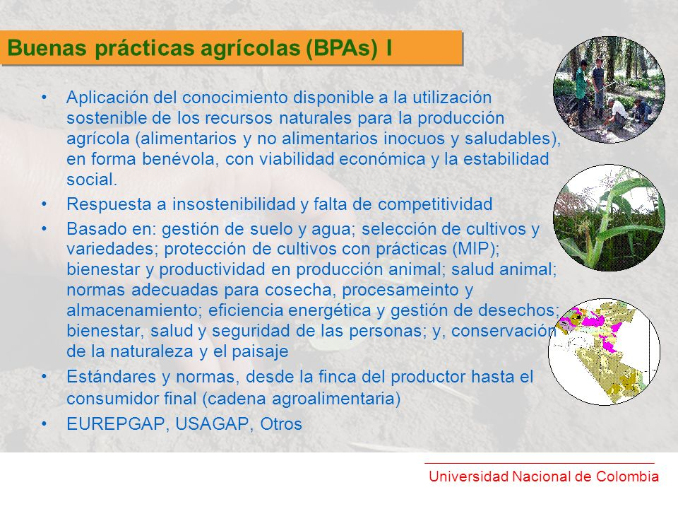 Buenas prácticas agrícolas (BPAs) I