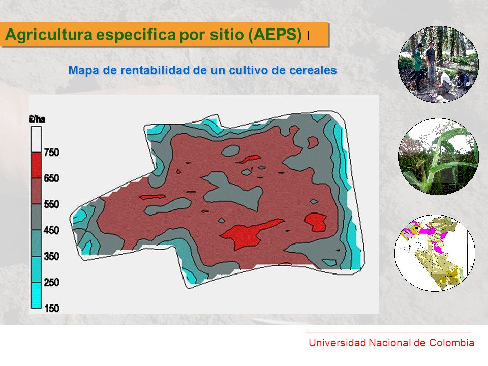 Agricultura especifica por sitio (AEPS) I