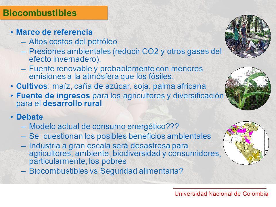 Biocombustibles Marco de referencia Altos costos del petróleo