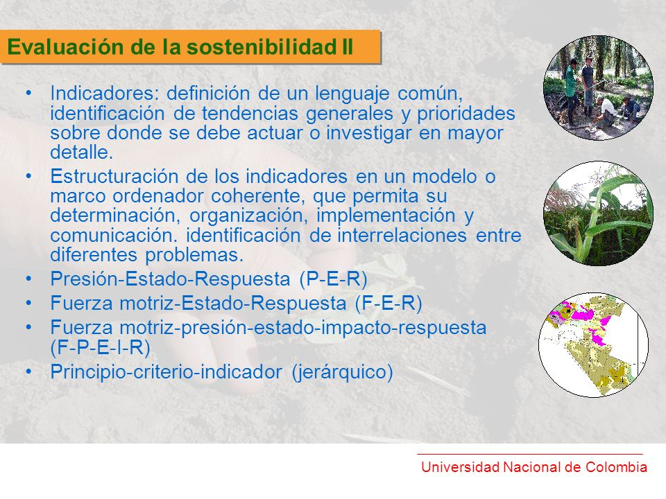 Evaluación de la sostenibilidad II