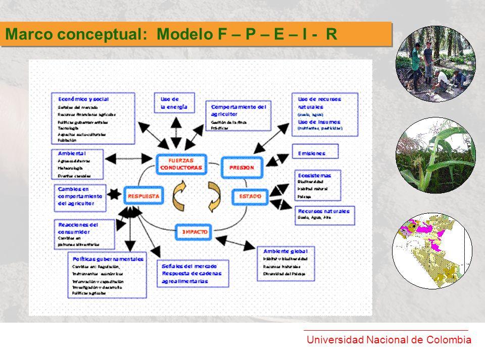 Marco conceptual: Modelo F – P – E – I - R