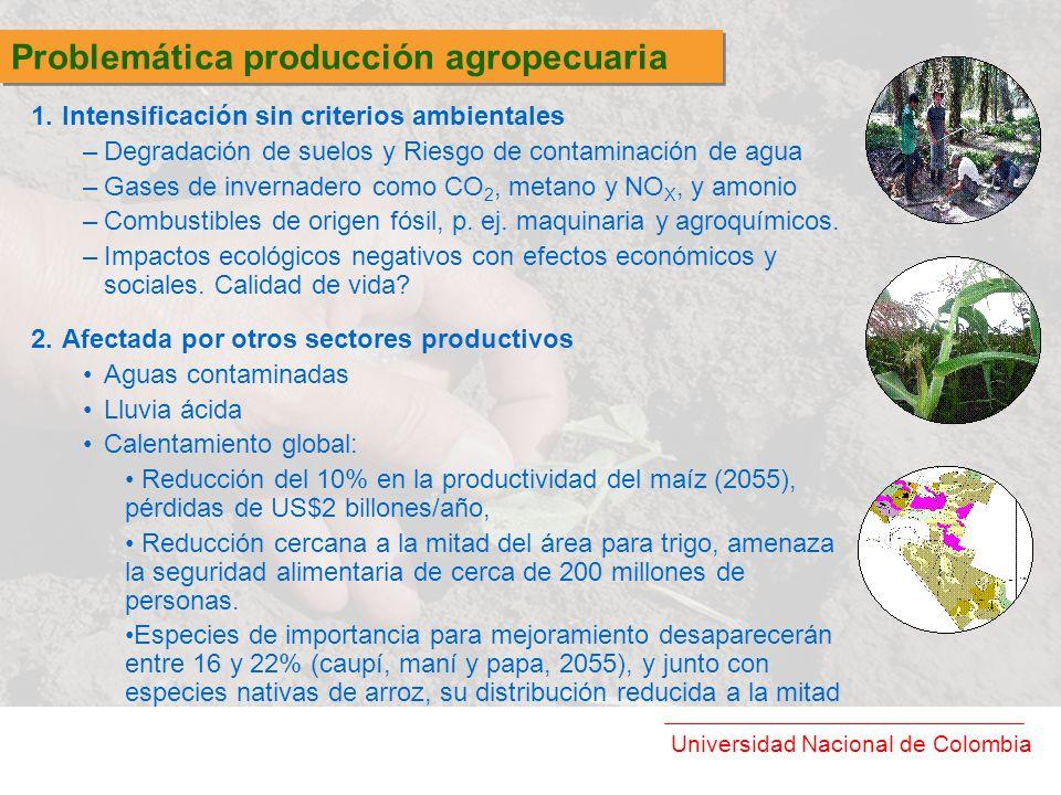Problemática producción agropecuaria