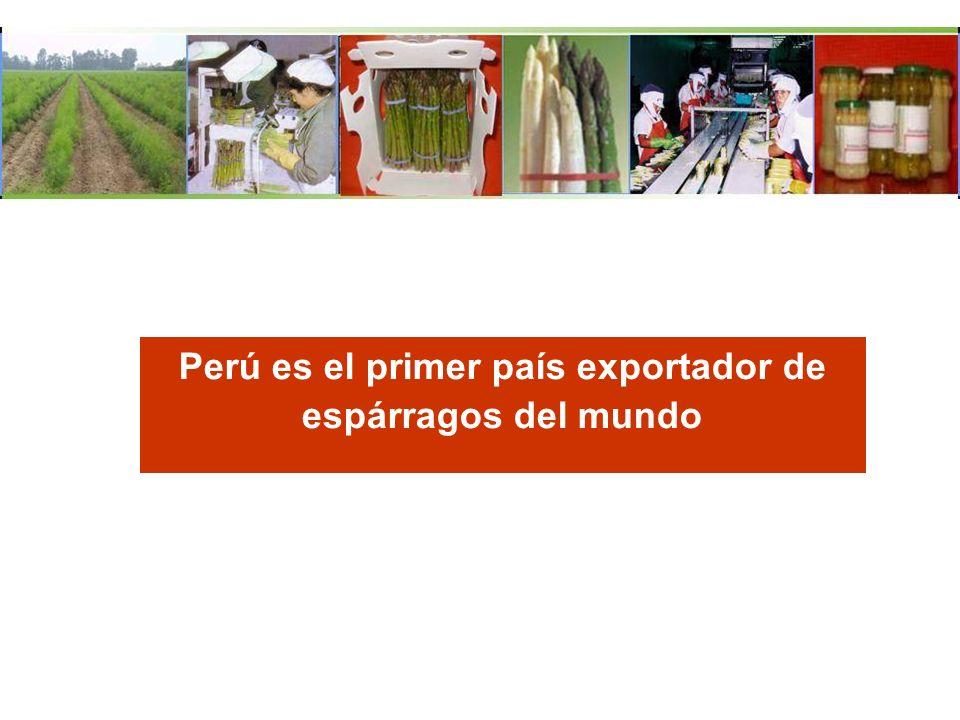 Perú es el primer país exportador de espárragos del mundo
