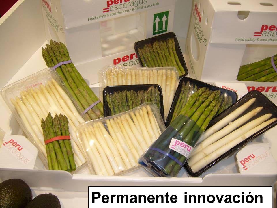 Permanente innovación