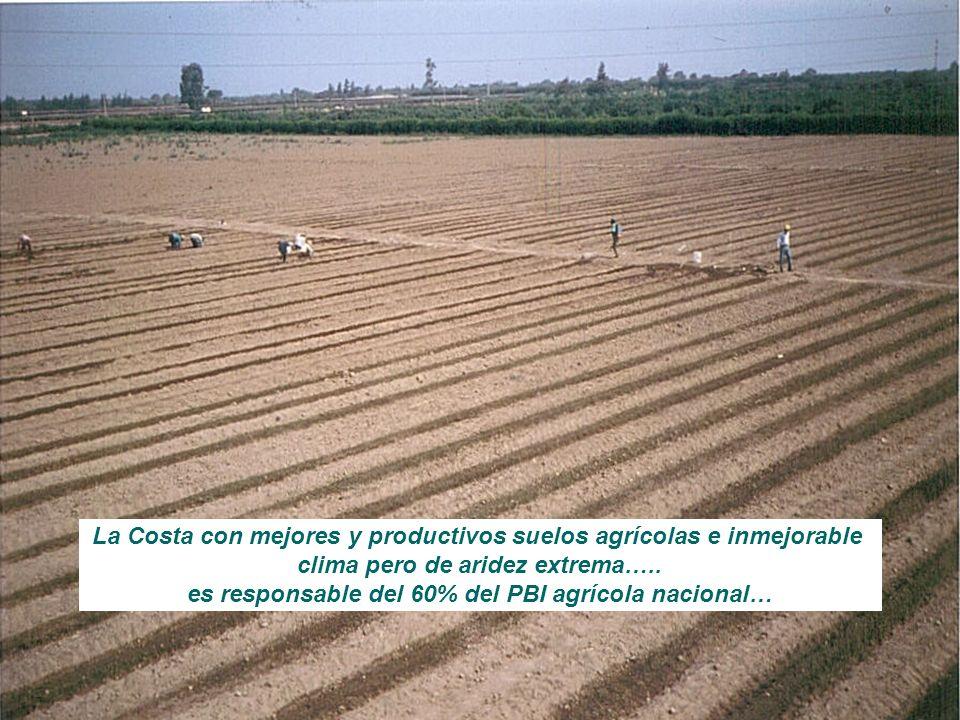 La Costa con mejores y productivos suelos agrícolas e inmejorable