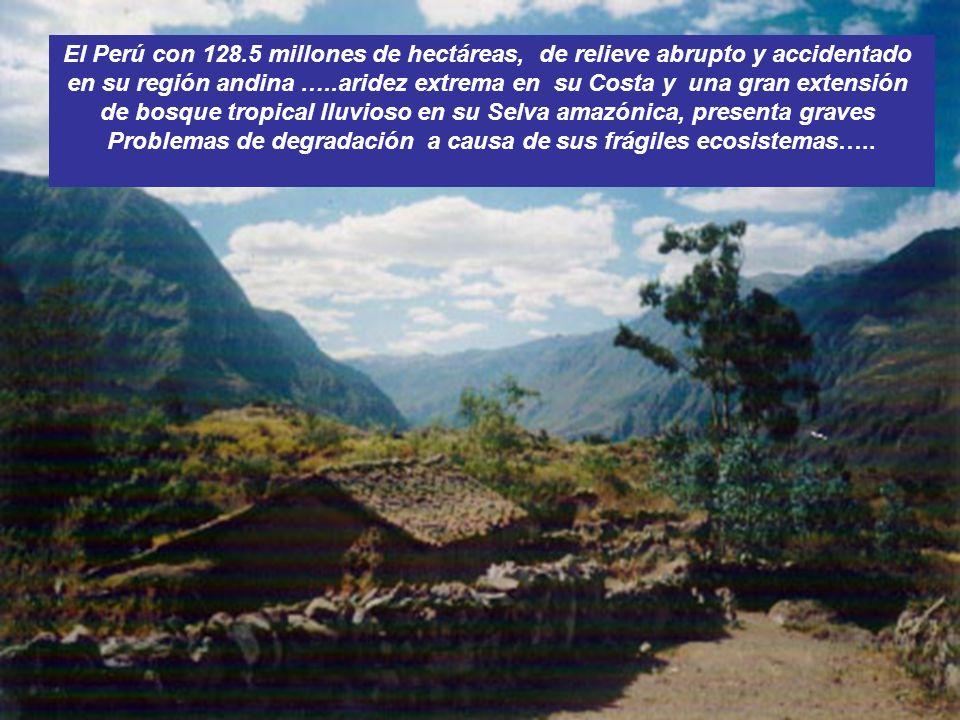 en su región andina …..aridez extrema en su Costa y una gran extensión