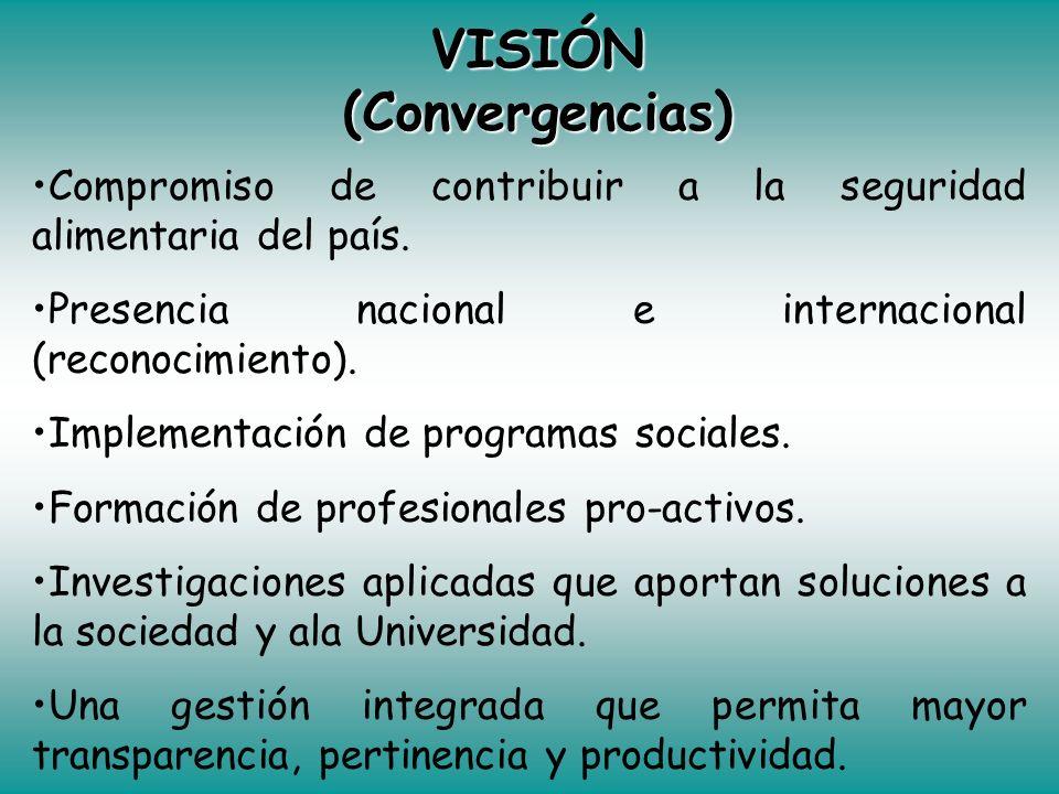 VISIÓN (Convergencias)