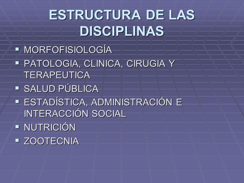 ESTRUCTURA DE LAS DISCIPLINAS