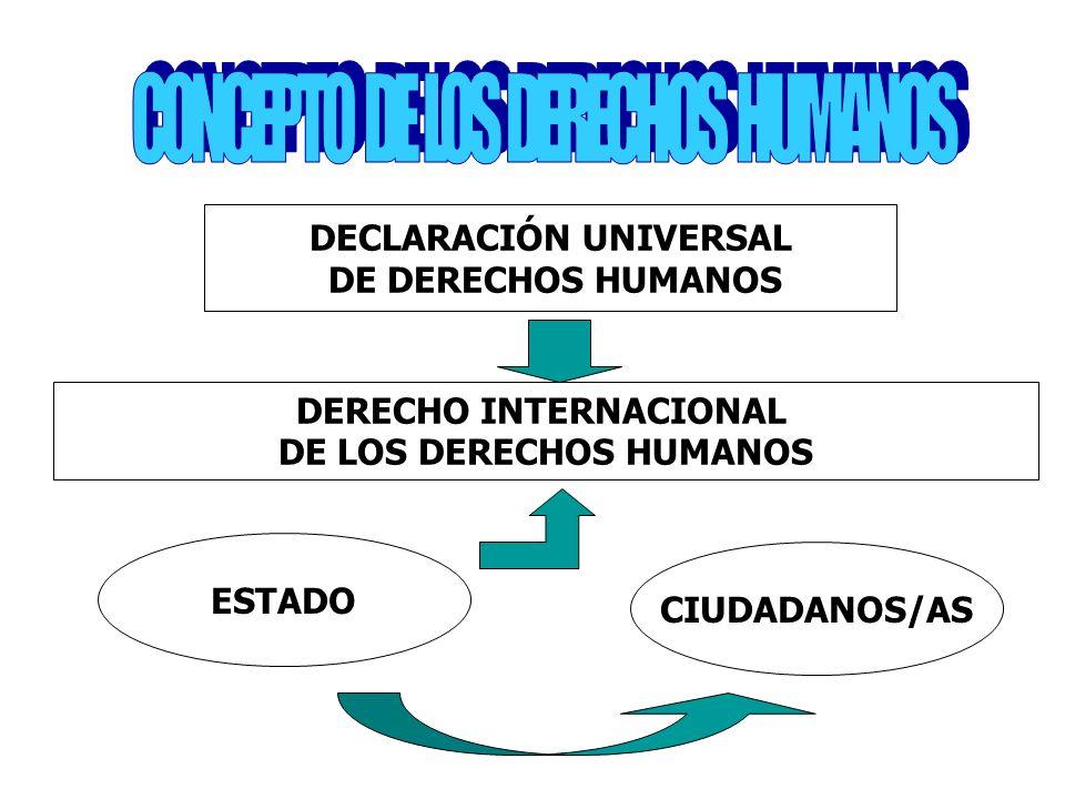 DECLARACIÓN UNIVERSAL DERECHO INTERNACIONAL DE LOS DERECHOS HUMANOS