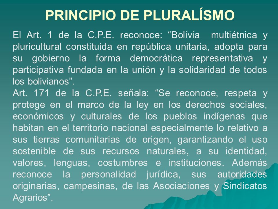 PRINCIPIO DE PLURALÍSMO