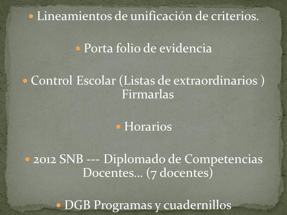Lineamientos de unificación de criterios. Porta folio de evidencia