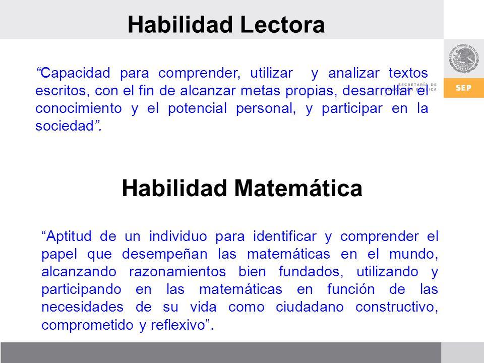 Habilidad Lectora Habilidad Matemática