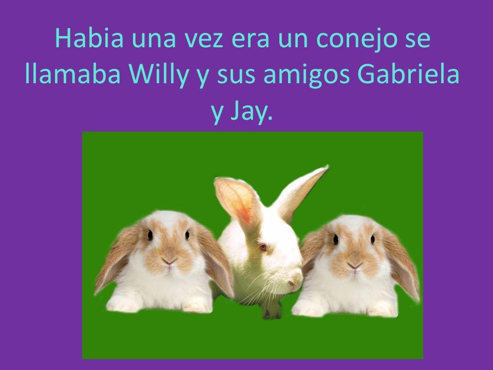 Habia una vez era un conejo se llamaba Willy y sus amigos Gabriela y Jay.